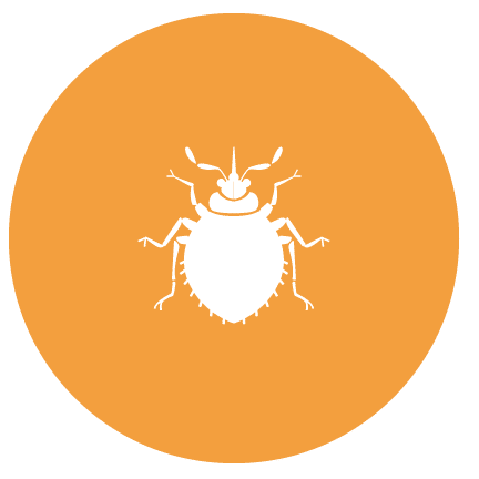 Pest Control Washington icon